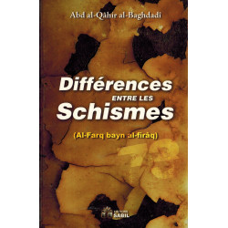 Differences entre les Schismes